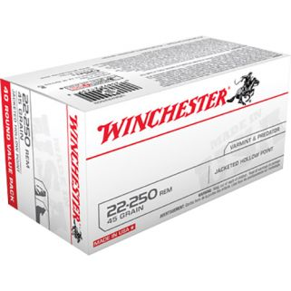 Winchester USA 22-250 Remington 45 Grain JHP 40 Round Box USA222502