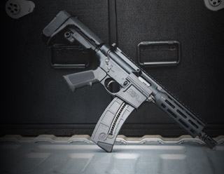 Perfect for training or just plinking